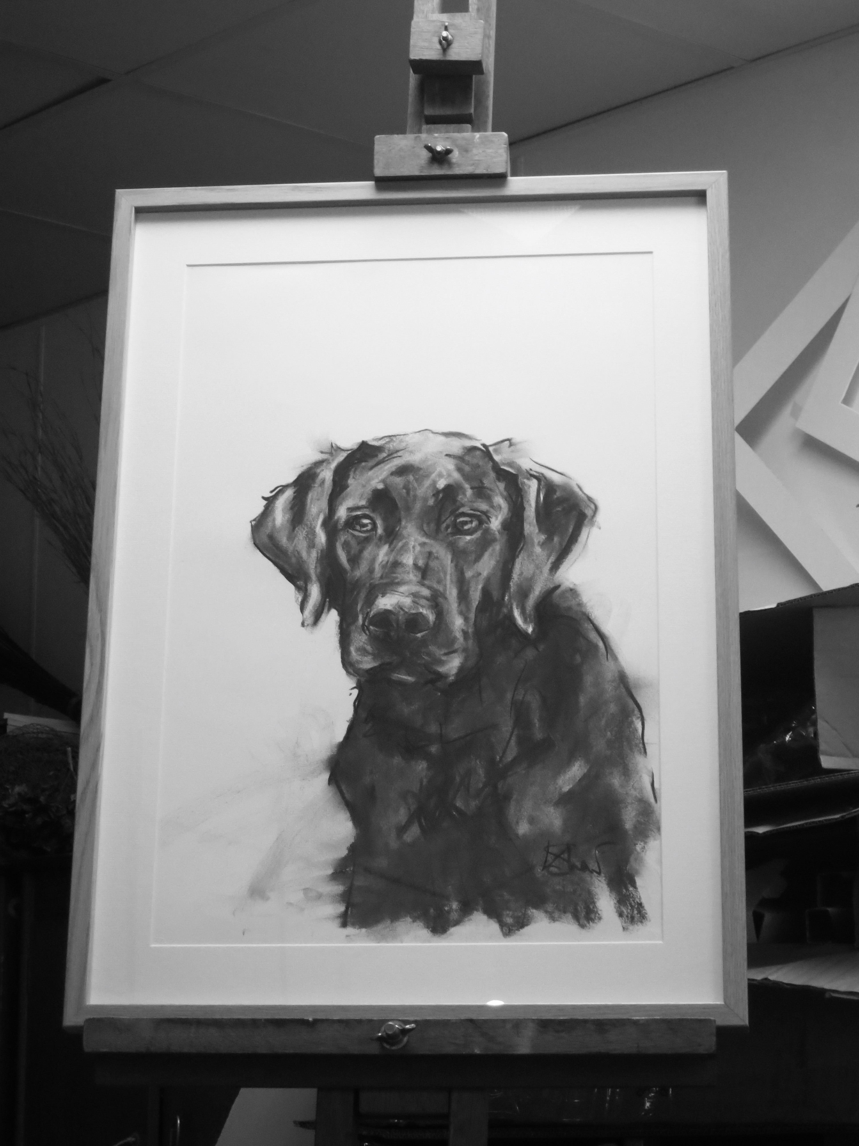 Black Lab Framed 2017