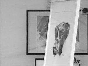 Boxer framed v2